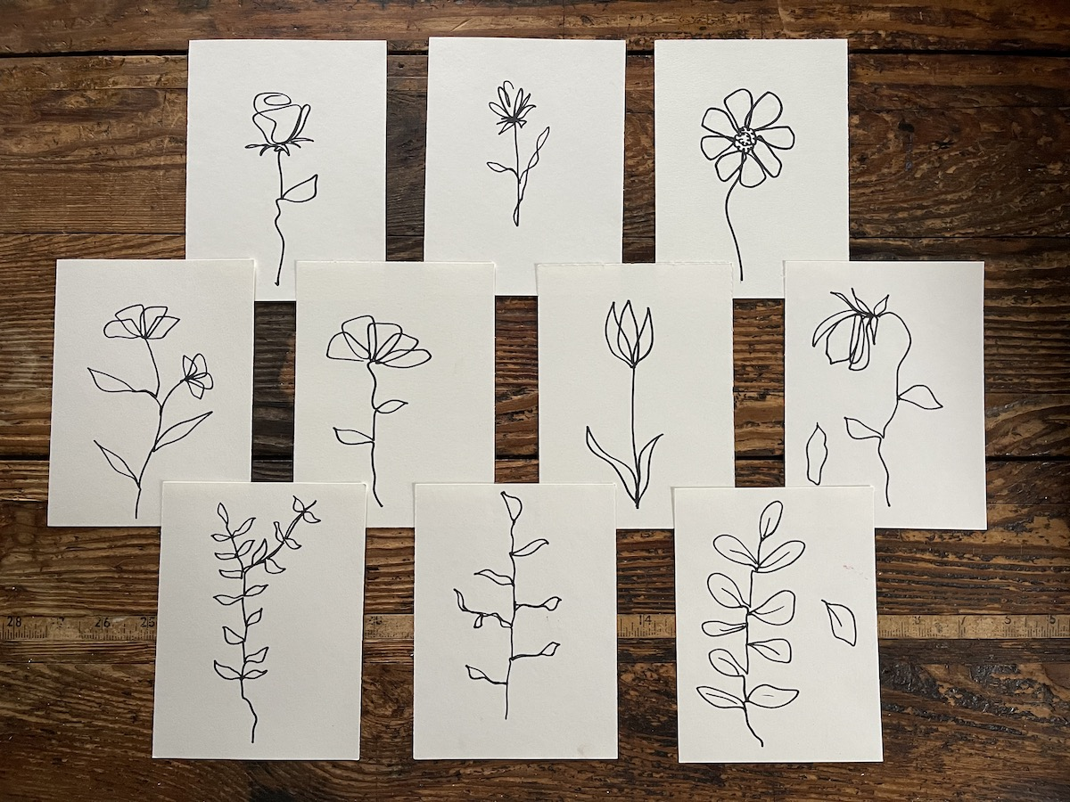 contour flowers drawn on paper