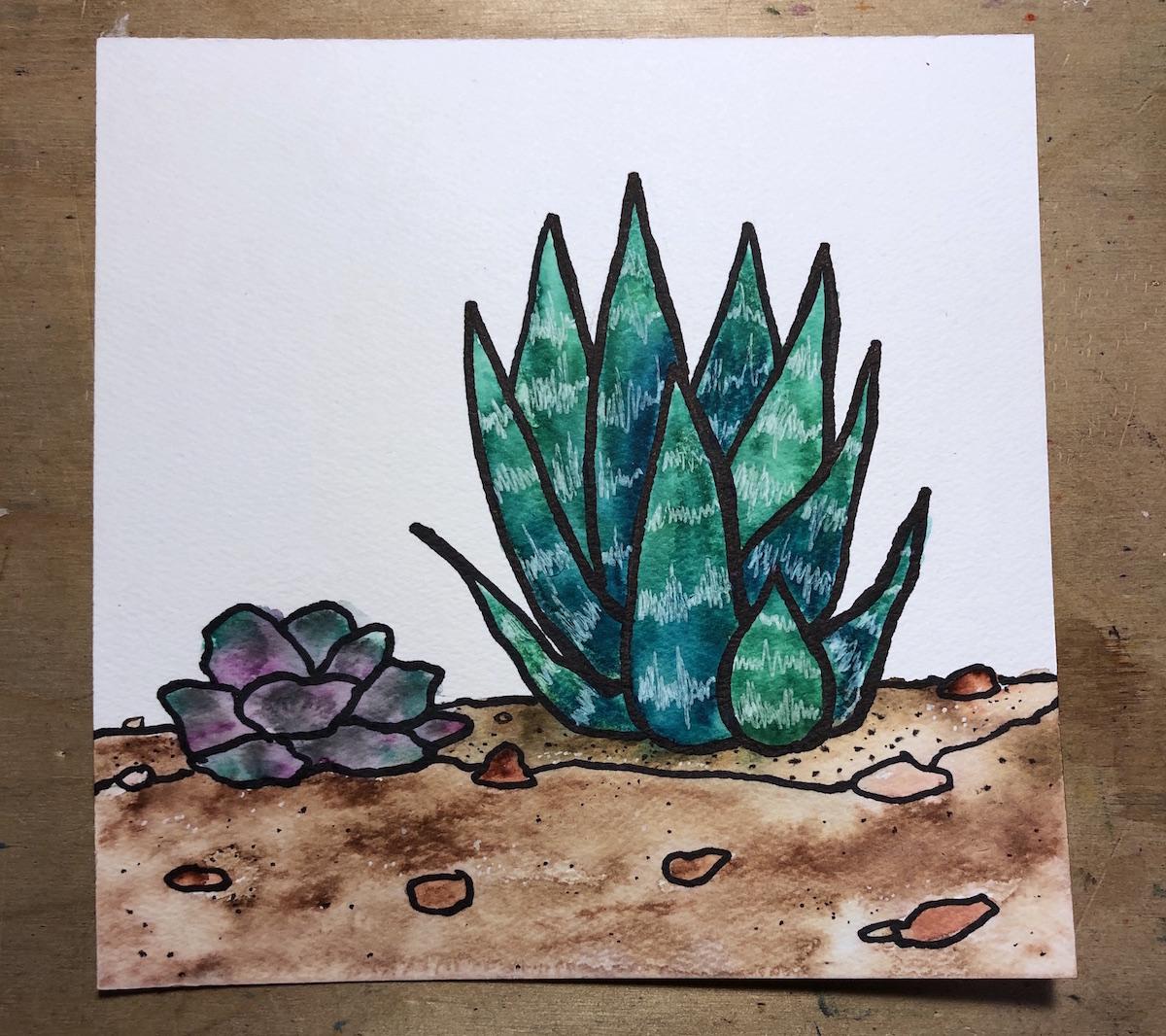 watercolor artwork of succulents