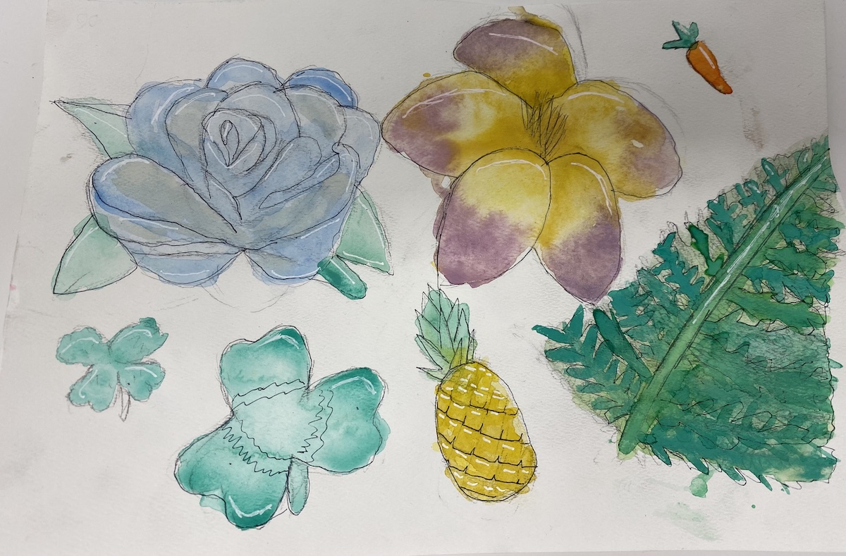 watercolor paintings and illustrations of flowers