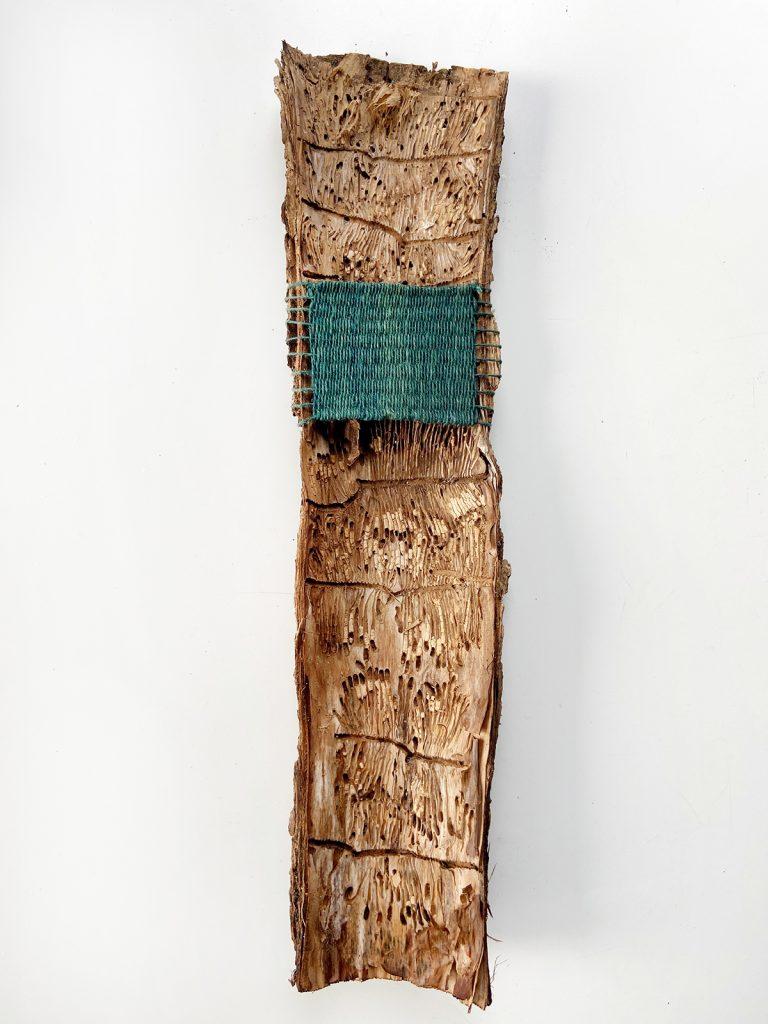 Weaving on Tree Bark
